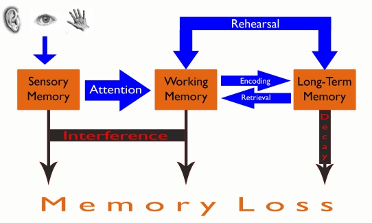 Memory Graphic