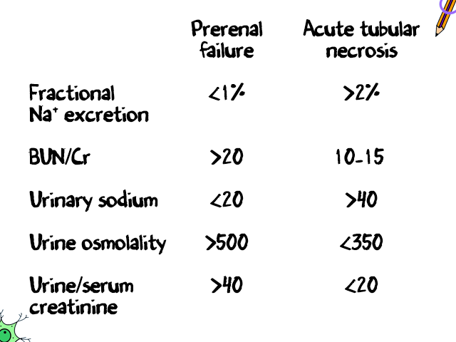 Image result for fractional excretion of sodium